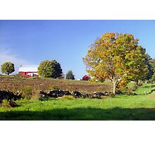 Early Autumn Farm, Connecticut Photographic Print