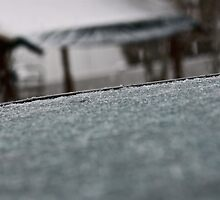 Ice Covered Table by illPlanet