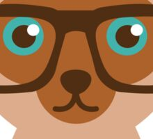Cute Cat Hipster Animal With Glasses Sticker