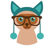 Cute Cat Hipster Animal With Glasses Photographic Print