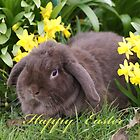 """Jack"" The Easter Bunny by Sandra Cockayne"