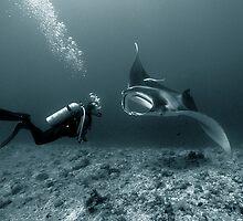 Encounter by Steve Jones
