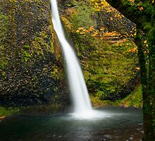 Horsetail Falls Autumn by DawsonImages