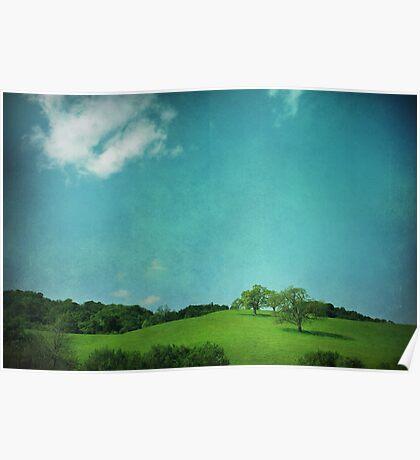 Green Grass, Blue Sky Poster