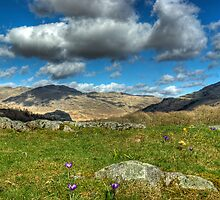 A Hint Of Spring In The Duddon Valley by VoluntaryRanger