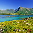 The Magic of Colors  -  Lofoten Islands . Norway . by Brown Sugar . Favorites: 2 Views: 507 . Thank you !!!!   dziękuję !!! by AndGoszcz