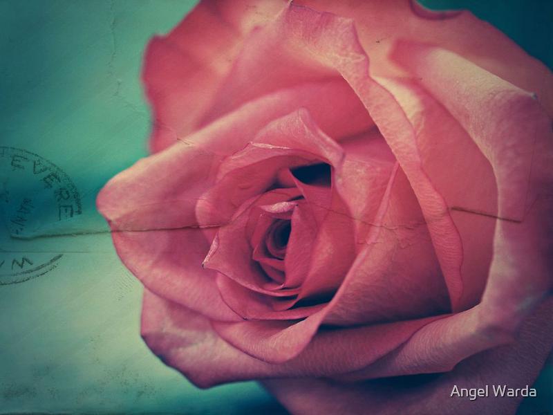 the memories. by Angel Warda