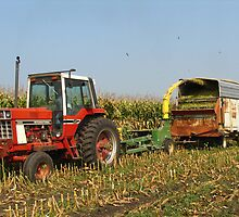 Chopping Silage - Northeast Iowa by Deb Fedeler