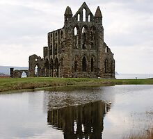 Whitby Abbey - North Yorkshire by monkeyferret