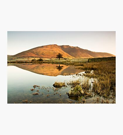Warm Reflections Photographic Print