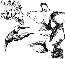 black n white hummers by Ellen Keagy