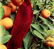 Oranges and Prayer Ribbon by Drew Walker