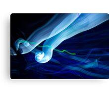 Epcot light trails  Canvas Print