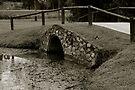 Gymipe Park Bridge by Sonja Wells