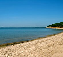 Shore of Lake Texoma by Ashleigh Johnson