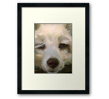 I Dub You... Boring Framed Print