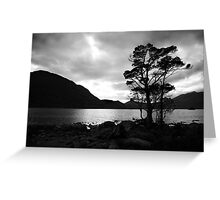 Standing Tree Greeting Card