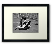Being James Dean Framed Print