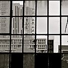 Through the windows... by Ali Brown