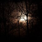 march 19th moon by katpartridge