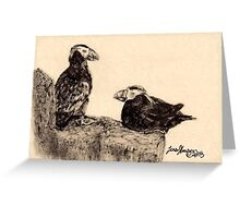 Puffin hangout Greeting Card