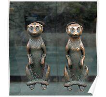 Meerkat Door Handles Poster