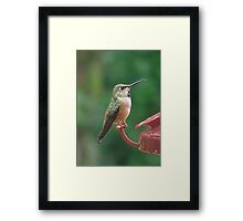 I Say...! Framed Print