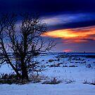 Winters Last Sunset by Katie WIsniewski