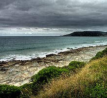 Surf Coast Looking West by Vince Russell