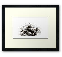 System Explosion Framed Print
