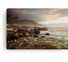 Sunset with the seagulls Canvas Print