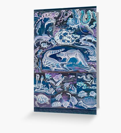 Adolphe Millot Reptile Inverted Greeting Card