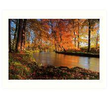 River lazily flows through the woods. Art Print