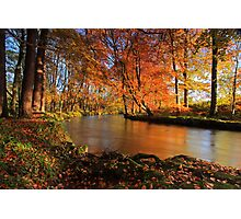 River lazily flows through the woods. Photographic Print