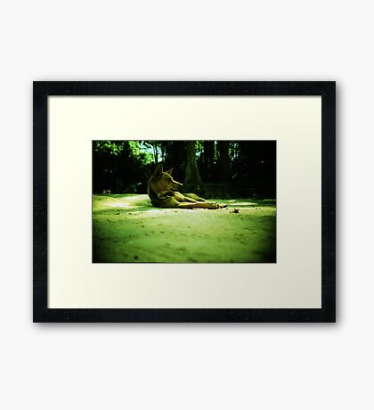 these are the days, siem reap, cambodia Framed Print