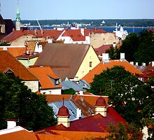 Tallin:Rooftops and the harbor by Phillip Wayne