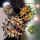 Geometric Creation by Grant Wilson