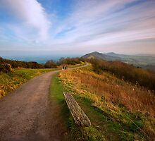 The Malvern Hills : March Evening by Angie Latham