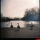 Platt Fields Park by klarutshka