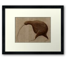 Its a Kiwi Framed Print