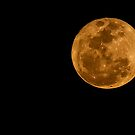 Supermoon by MKWhite
