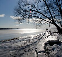 Spring Ice - Ottawa River by Debbie Pinard