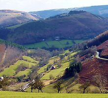 View from the Horseshoe Pass, llangollen by artfulvistas