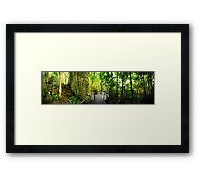 High Definition Forest Panorama Framed Print