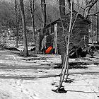Red Wheelbarrow - Dunrobin by Debbie Pinard