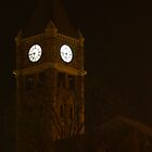 Clock Tower on the First Day of Spring by BarbL