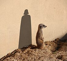 The Phantom Meerkat. by Greg Little