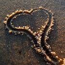 I Love Ft. Walton Beach by Dawn di Donato