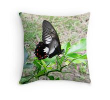 Orchard Swallowtail Butterfly Throw Pillow