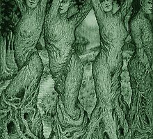 The Dryads by Debra A. Hitchcock